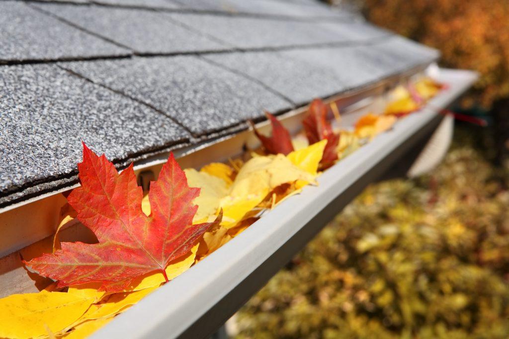 6 Fall Home Maintenance Checklist Items
